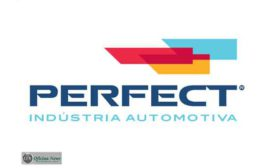 Perfect Brasil completa um ano de vendas em canais digitais